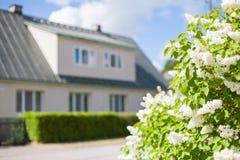 Fiori lilla bianchi con una casa della famiglia numerosa nei precedenti immagine stock