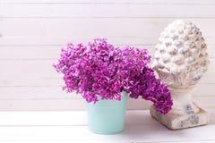 Fiori lilla della molla olorful del ¡ di Ð su fondo di legno bianco Fotografia Stock