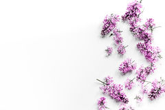 Fiori lilla della primavera sul modello bianco femminile di vista superiore del fondo del Ministero degli Interni del workdesk Immagine Stock Libera da Diritti