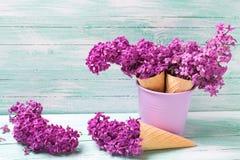 Fiori lilla freschi nei coni della cialda sul backgr di legno del turchese Fotografie Stock Libere da Diritti