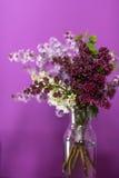 Fiori lilla freschi in un vaso di vetro semplice fotografie stock