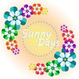 Fiori luminosi che desiderano un giorno soleggiato Immagine Stock Libera da Diritti