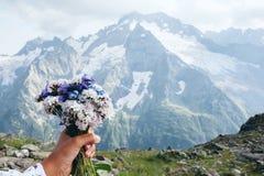 Fiori in montagne Immagini Stock