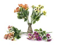 Fiori multicolori in un vaso isolato su fondo bianco Fotografie Stock