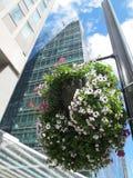 Fiori nella via e nella costruzione moderna dietro, Londra immagine stock