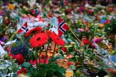 Fiori a Oslo dopo il terrore Fotografia Stock Libera da Diritti