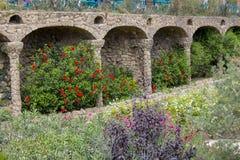 Fiori in parco Guell Fotografia Stock