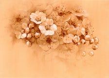 Fiori, pastelli Fotografia Stock Libera da Diritti