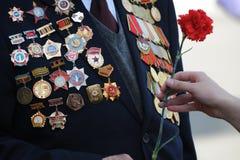 Fiori per il veterano della guerra Fotografia Stock Libera da Diritti