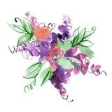 Fiori porpora astratti dipinti a mano dell'acquerello Elementi per il disegno Fotografia Stock