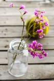 Fiori porpora in bottiglie di vetro fotografia stock