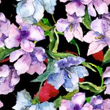 Fiori porpora e blu di alstroemeria Fiore botanico floreale Modello senza cuciture del fondo Fotografie Stock Libere da Diritti