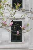 Fiori rosa che fioriscono davanti alla piantagione del sud nel Mississippi immagini stock libere da diritti