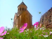 Fiori rosa con la chiesa ai precedenti Fotografia Stock