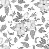 Fiori rosa dell'acquerello e modello blu di ripetizione delle foglie Fotografia Stock Libera da Diritti
