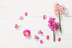 Fiori rosa della molla su fondo di legno bianco Immagine Stock Libera da Diritti