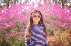 Fiori rosa della primavera fotografie stock libere da diritti