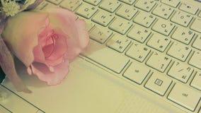 Fiori rosa sulla tastiera Immagine Stock