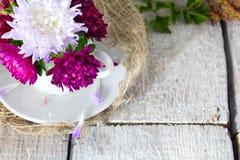 Fiori rosa in una tazza decorativa su fondo d'annata rustico bianco Fotografia Stock