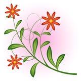 Fiori rossi royalty illustrazione gratis