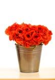 Fiori rossi del papavero in benna metallica fotografia stock libera da diritti