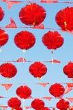 Fiori rossi della lanterna Fotografie Stock Libere da Diritti