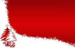 Fiori rossi delle stelle della scheda dell'albero di Natale Immagini Stock
