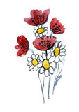 Fiori rossi e bianchi verniciati in acquerello Immagine Stock