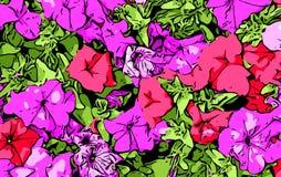 Fiori rossi e viola Fotografie Stock Libere da Diritti