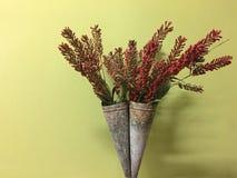 Fiori rossi nel fondo conico di giallo del vaso Fotografie Stock