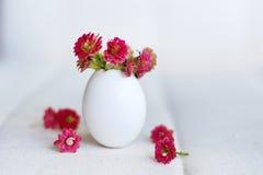 Fiori rossi nel guscio d'uovo Fotografie Stock Libere da Diritti