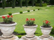 Fiori rossi in vasi da fiori di pietra decorati in Volksgarten, Vienna Fotografie Stock Libere da Diritti