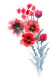 Fiori rossi verniciati in acquerello Fotografia Stock
