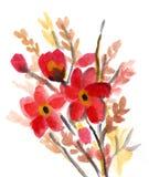 Fiori rossi verniciati in acquerello Fotografie Stock Libere da Diritti