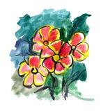 Fiori rossi verniciati in acquerello Immagine Stock Libera da Diritti