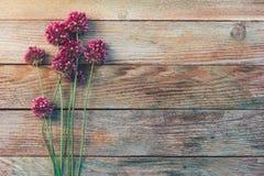 Fiori selvaggi di allium su un fondo d'annata di legno Fotografia Stock