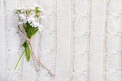 Fiori selvaggi su una struttura lavorata a maglia beige Fotografia Stock Libera da Diritti