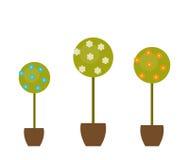 Fiori stabiliti dell'albero nel vaso Progettazione piana Vettore Fotografie Stock