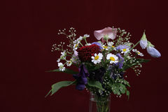 Fiori sul bakcround viola Fotografie Stock Libere da Diritti