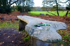 Fiori sul banco commemorativo in legno Fotografia Stock