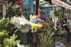 Fiori sul boulevard di Rambla Vende sempre molti fiori qui Immagini Stock Libere da Diritti