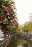 Fiori sul canale a Amsterdam, fiume di Amstel, Olanda, Paesi Bassi fotografia stock libera da diritti