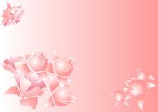 Fiori sul colore rosa una priorità bassa illustrazione vettoriale