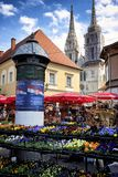 Fiori sul mercato del ` s di Zagabria Immagine Stock Libera da Diritti
