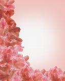 Fiori sul modello della tela di canapa fotografia stock