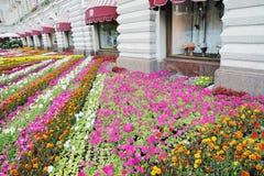 Fiori sul quadrato rosso a Mosca Fotografie Stock Libere da Diritti