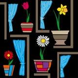 Fiori sulla finestra Immagine Stock Libera da Diritti