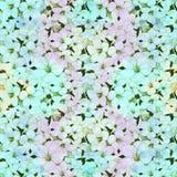 Fiori tropicali Arti grafiche Composizione decorativa - fiori su un fondo dell'acquerello Usi i materiali stampati, i segni, ogge royalty illustrazione gratis