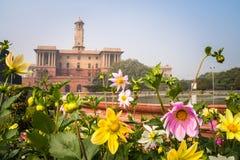 Fiori in un giardino convenzionale, giardino di Mughal, Rashtrapati Bhavan fotografie stock