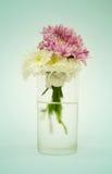Fiori in un vaso Fotografia Stock